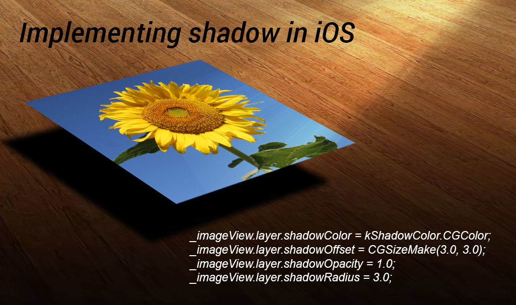 feature image shadow blog